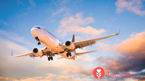 Des solutions aux allergies pour chaque moyen de transport sur la route des vacances (1)