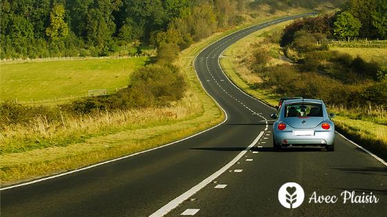 Les allergies sur la route des vacances : partir en voiture via l'autoroute