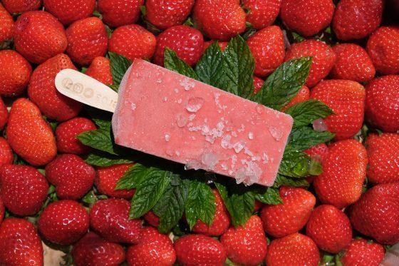 Glaces sans allergènes majeurs - Paletas fruitées des Pistoleros fraise